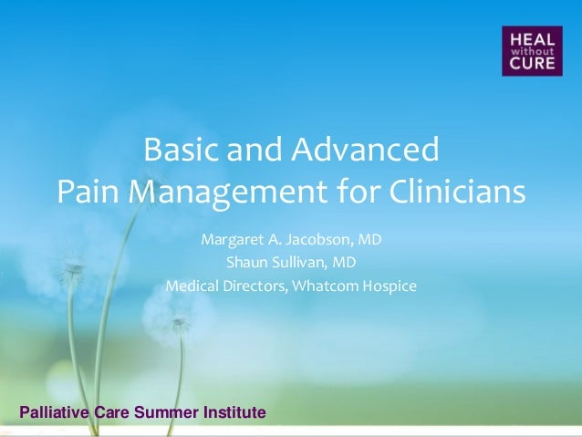 Palliative Care Summer Institute Basic and Advanced Pain Management for Clinicians Margaret A. Jacobson, MD Shaun Sullivan...