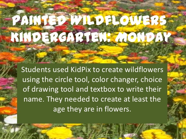 Painted WildflowersKindergarten: Monday Students used KidPix to create wildflowers using the circle tool, color changer, c...