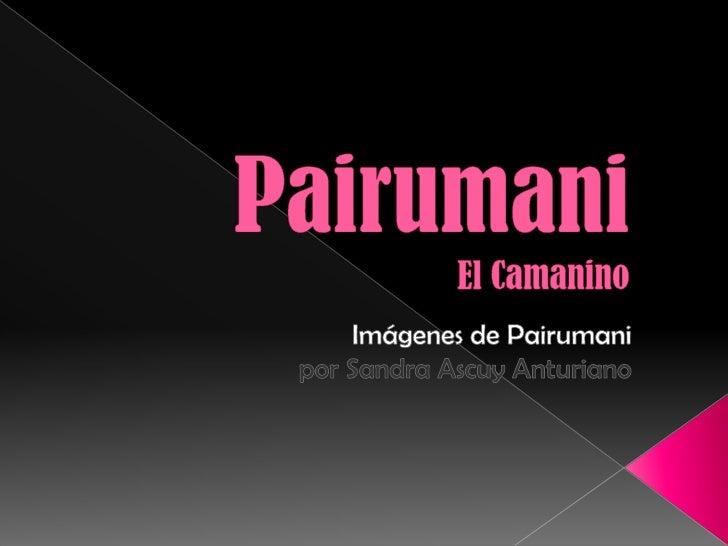 PairumaniEl Camanino<br />Imágenes de Pairumanipor Sandra AscuyAnturiano<br />
