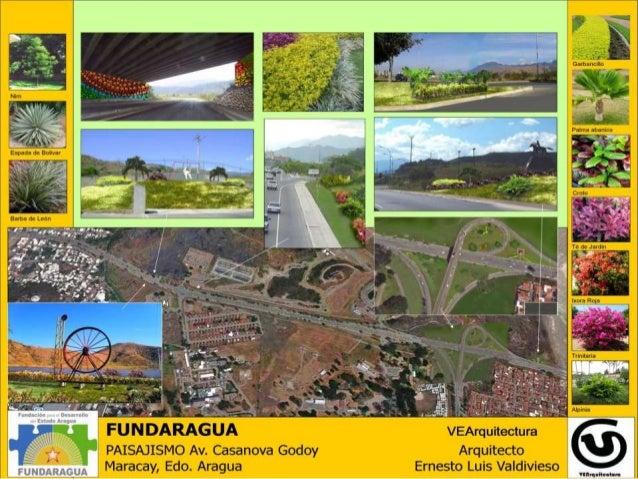 Proyecto de paisajismo urbano ciudad de maracay - Paisajismo urbano ...