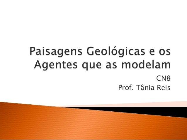 CN8 Prof. Tânia Reis