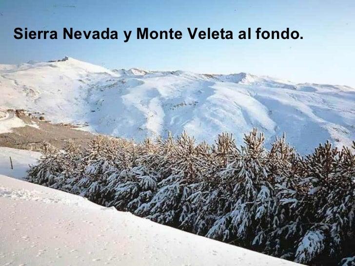 <ul><li>Sierra Nevada y Monte Veleta al fondo. </li></ul>