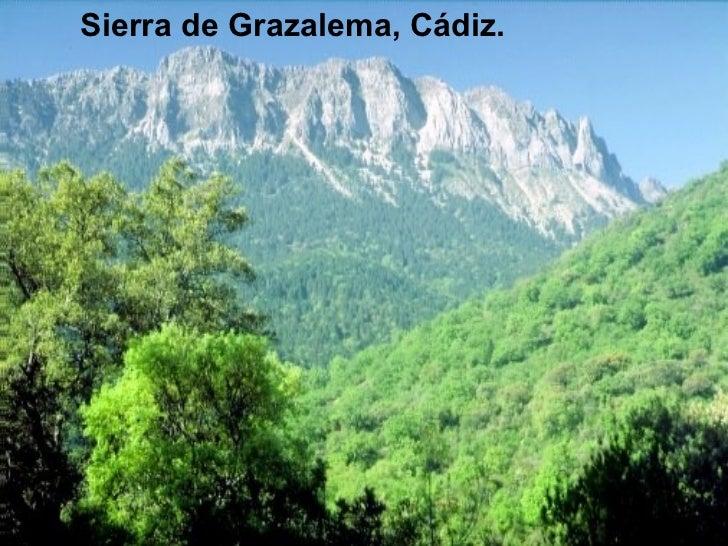 <ul><li>Sierra de Grazalema, Cádiz. </li></ul>