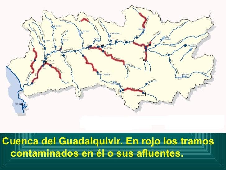 <ul><li>Cuenca del Guadalquivir. En rojo los tramos contaminados en él o sus afluentes. </li></ul>