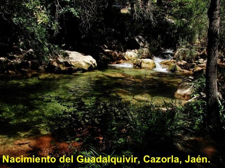 <ul><li>Nacimiento del Guadalquivir, Cazorla, Jaén. </li></ul>