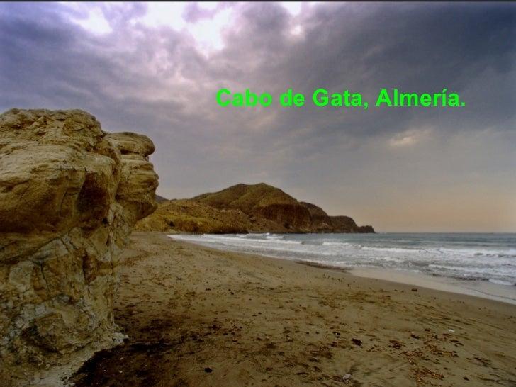 <ul><li>Cabo de Gata, Almería. </li></ul>