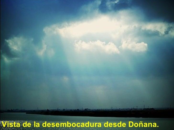 <ul><li>Vista de la desembocadura desde Doñana. </li></ul>