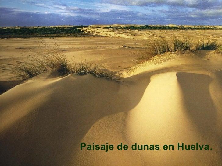 <ul><li>Paisaje de dunas en Huelva. </li></ul>