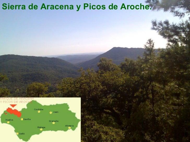 <ul><li>Sierra de Aracena y Picos de Aroche. </li></ul>