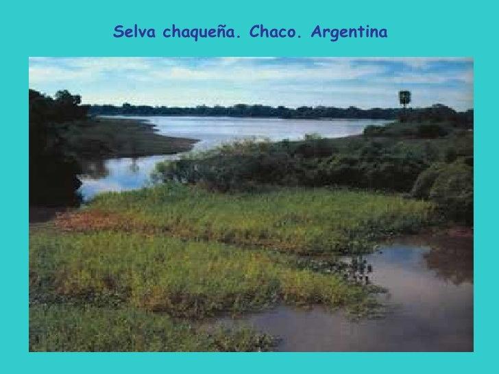 Mi Argentina: Paisajes.De.Mi.Argentina..14