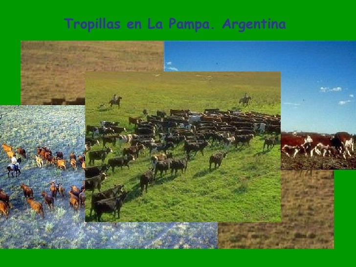 Mi Argentina: Paisajes.De.Mi.Argentina..21