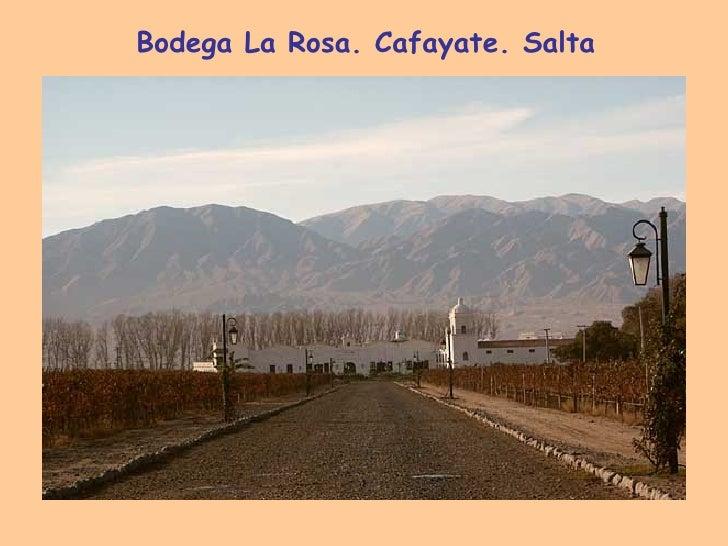 Bodega La Rosa. Cafayate. Salta
