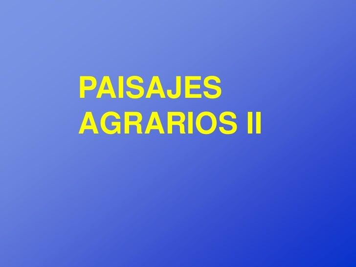 PAISAJESAGRARIOS II