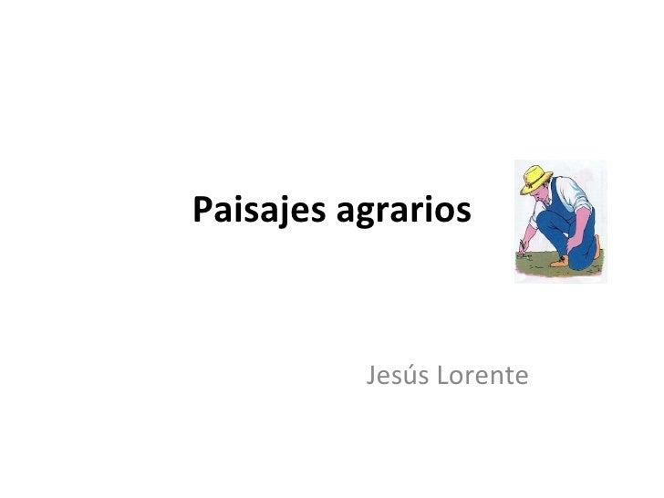 Paisajes agrarios Jesús Lorente