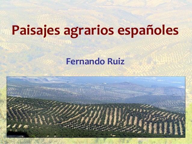 Paisajes agrarios españoles        Fernando Ruiz