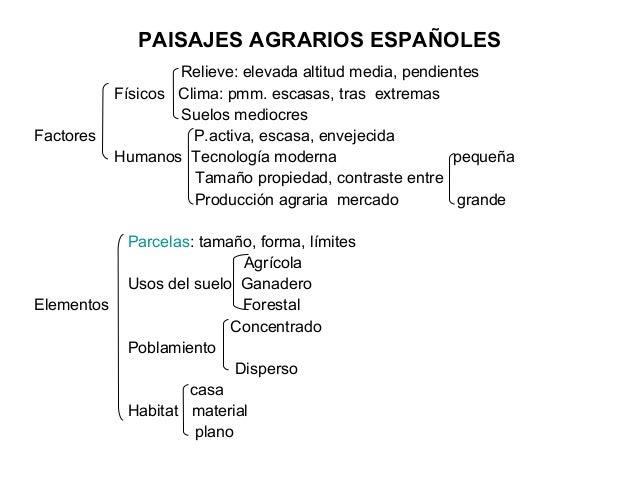 PAISAJES AGRARIOS ESPAÑOLES                    Relieve: elevada altitud media, pendientes            Físicos Clima: pmm. e...
