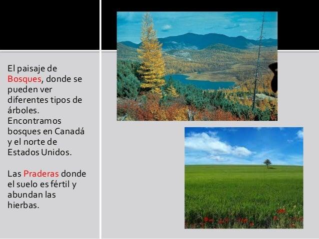 Paisajes de am rica - Tipos de paisajes ...