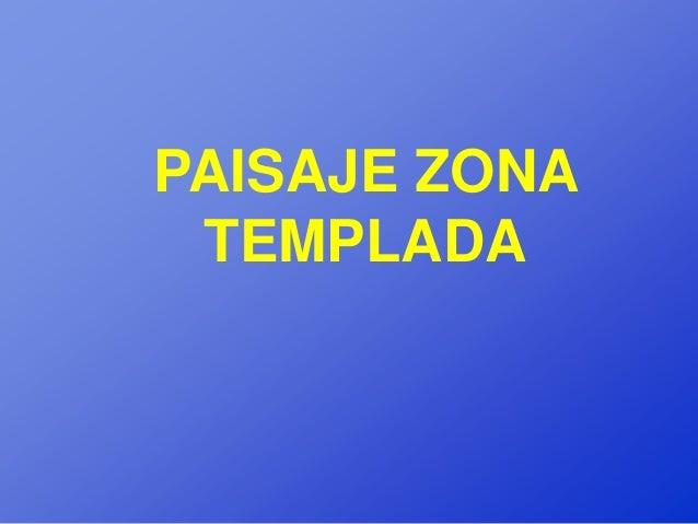 PAISAJE ZONA TEMPLADA