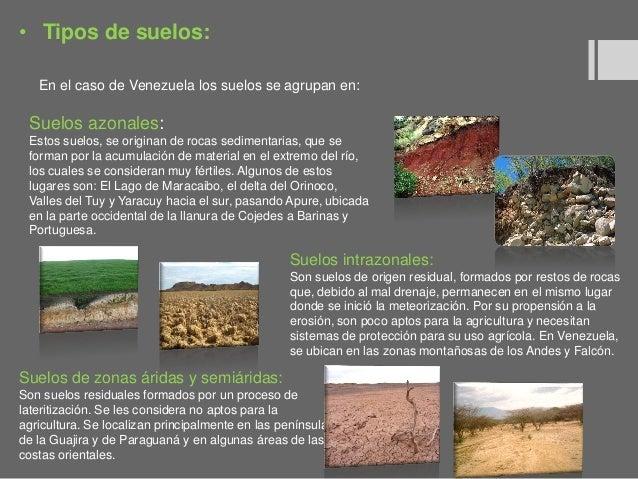 Paisajismo tipos de suelos y plantas - Clases de suelo ...