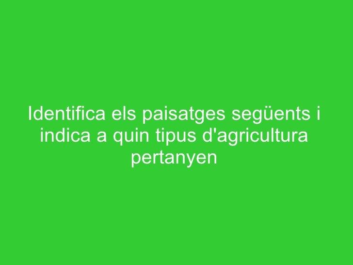 Identifica els paisatges següents i indica a quin tipus d'agricultura pertanyen