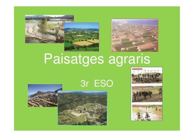 Paisatges agraris     3r ESO