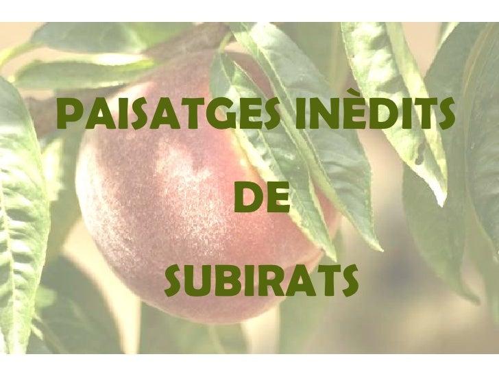 PAISATGES INÈDITS DE SUBIRATS