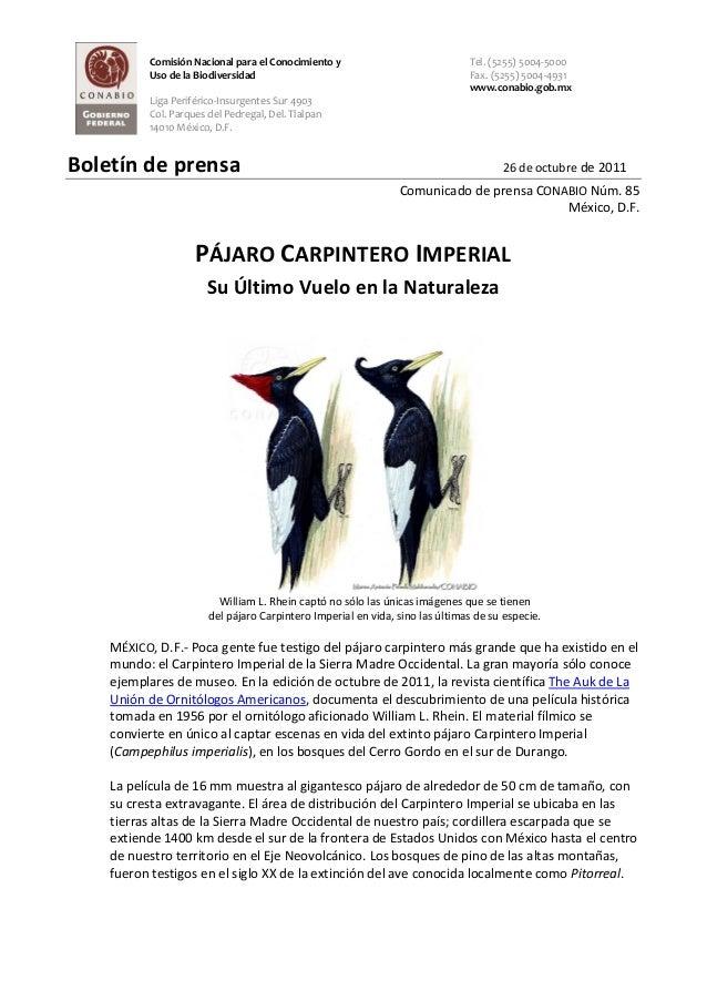 Comisión Nacional para el Conocimiento y Uso de la Biodiversidad Liga Periférico-Insurgentes Sur 4903 Col. Parques del Ped...