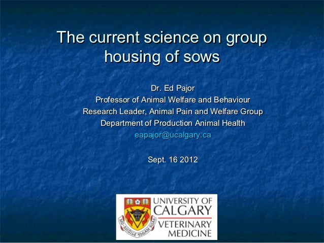 The current science on group      housing of sows                     Dr. Ed Pajor      Professor of Animal Welfare and Be...