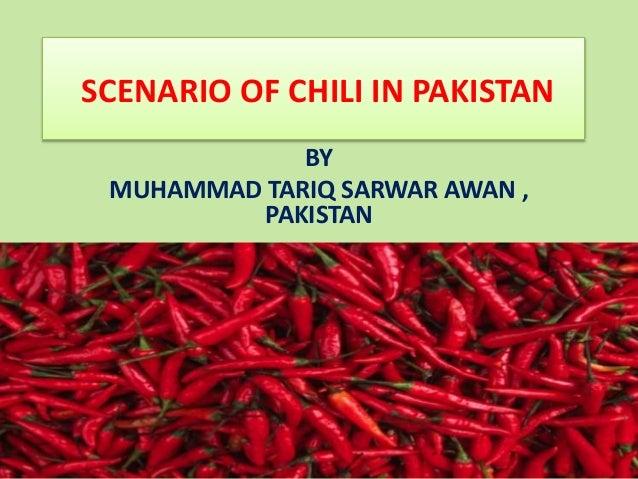 Pakistan chilli production scenario by Tariq Sarwar Awan, Food Techn…