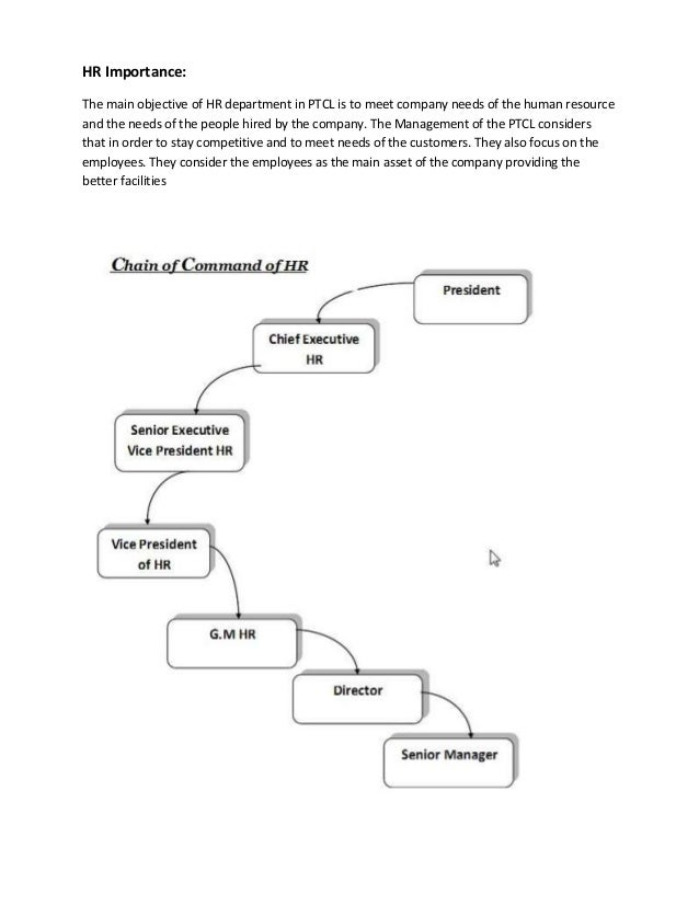 chain of command importance essay The importance of the chain of command is that it provides stability when incidents come about that need to be dealt with it sets up the structure for which you report all good and bad things, accidents, mistakes, tardiness and so on.