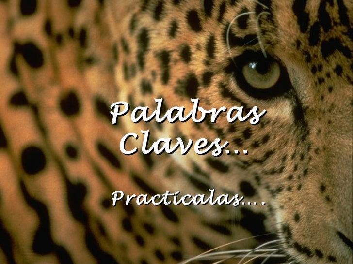 Palabras Claves… Practicalas….