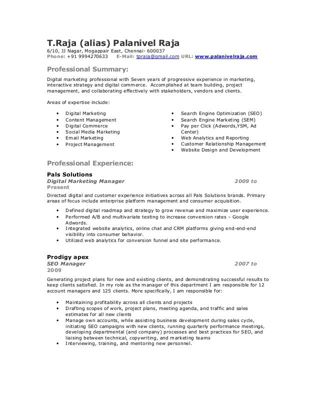 Good Seo Expert Resume