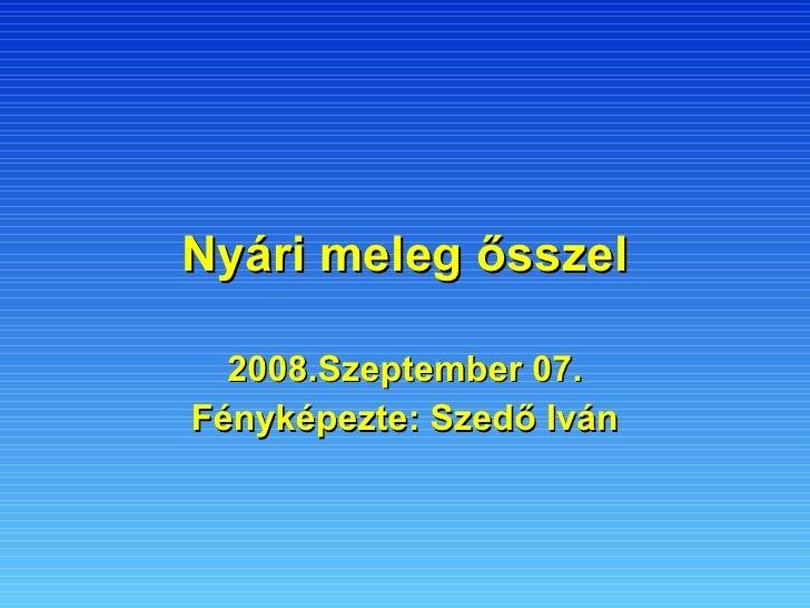 Nyári meleg ősszel 2008.Szeptember 07. Fényképezte: Szedő Iván