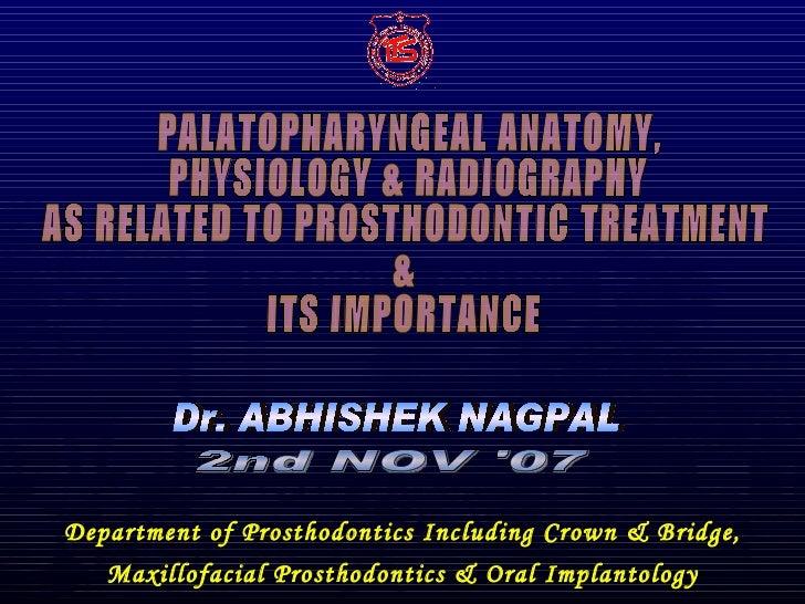 Palatopharyngeal anatomy
