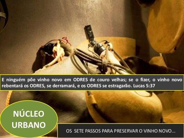 E ninguém põe vinho novo em ODRES de couro velhas; se o fizer, o vinho novorebentará os ODRES, se derramará, e os ODRES se...