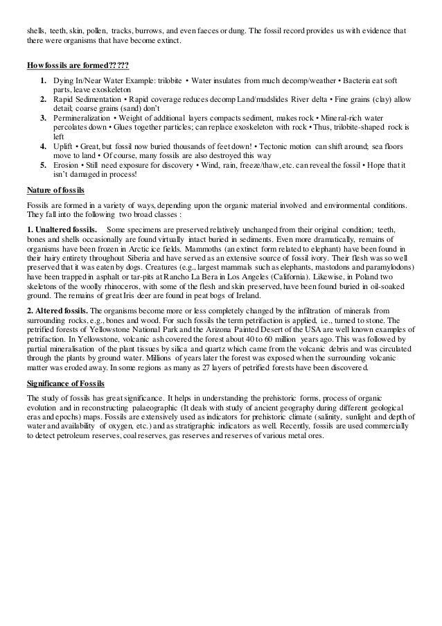 paleontological evidences of evolution pdf