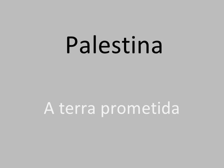 Palestina A terra prometida