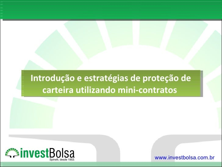 Introdução e estratégias de proteção de carteira utilizando mini-contratos