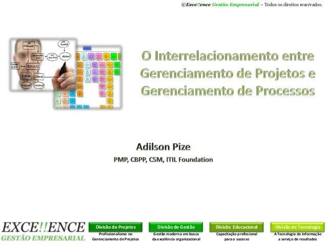 ©Exce!!ence Gestão Empresarial – Todos os direitos reservados.Divisão de ProjetosProfissionalismo noGerenciamento de Proje...