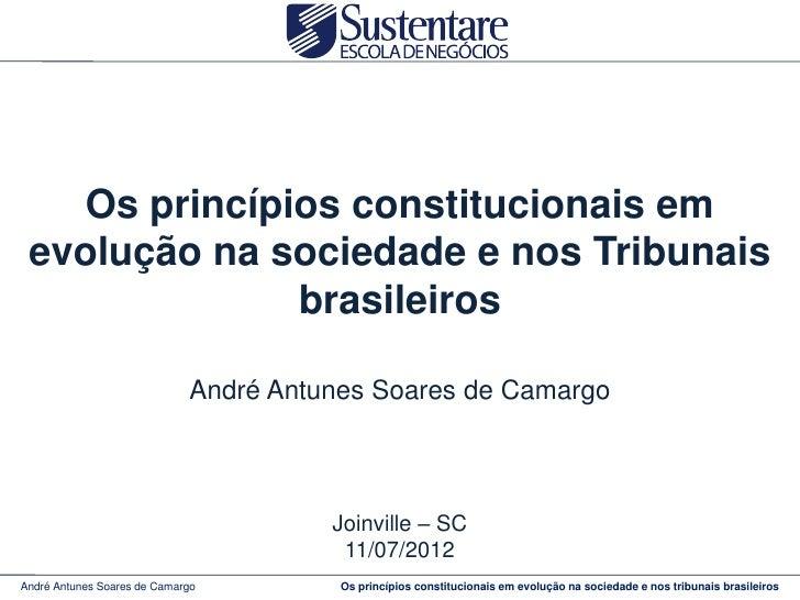 Os princípios constitucionais em evolução na sociedade e nos Tribunais              brasileiros                           ...