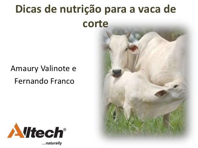 Dicas de nutrição para a vaca de corte Amaury Valinote e Fernando Franco