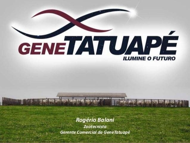 Rogério Balani Zootecnista Gerente Comercial da GeneTatuapé