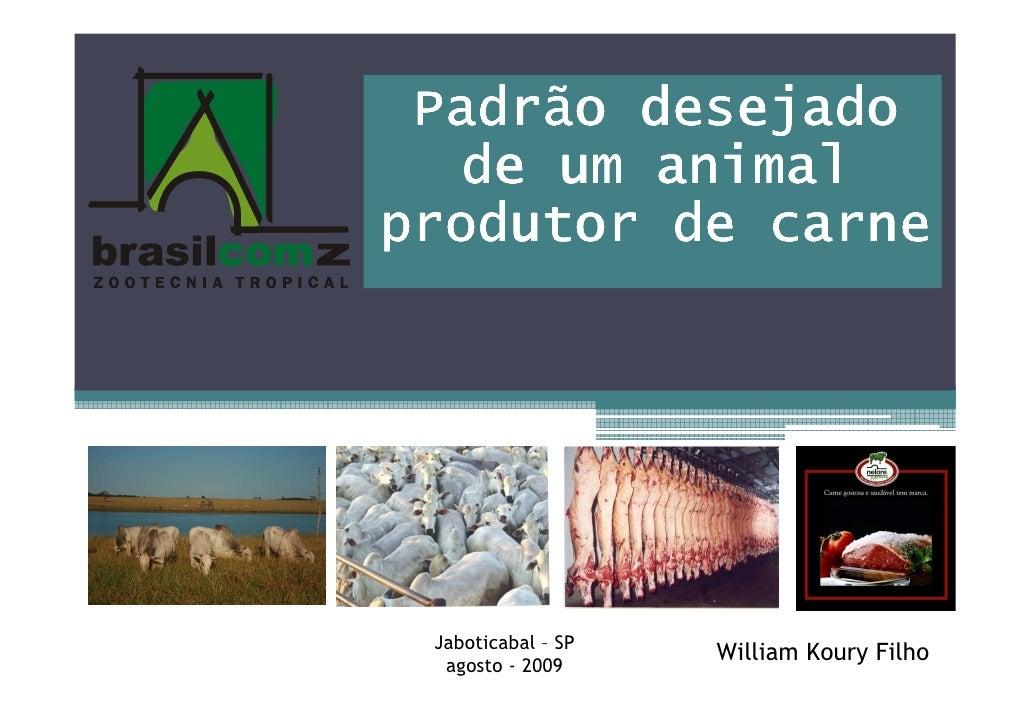 Padrão desejado    de um animal produtor de carne      Jaboticabal – SP   agosto - 2009                     William Koury ...
