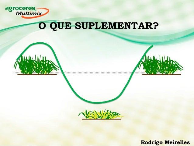 O QUE SUPLEMENTAR?  Rodrigo Meirelles