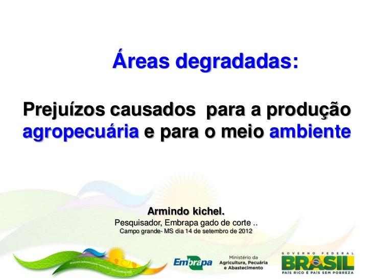 Áreas degradadas:Prejuízos causados para a produçãoagropecuária e para o meio ambiente                  Armindo kichel.   ...