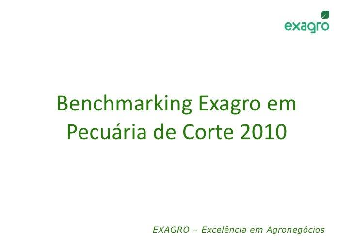 BenchmarkingExagroem  PecuáriadeCorte2010            EXAGRO – Excelência em Agronegócios