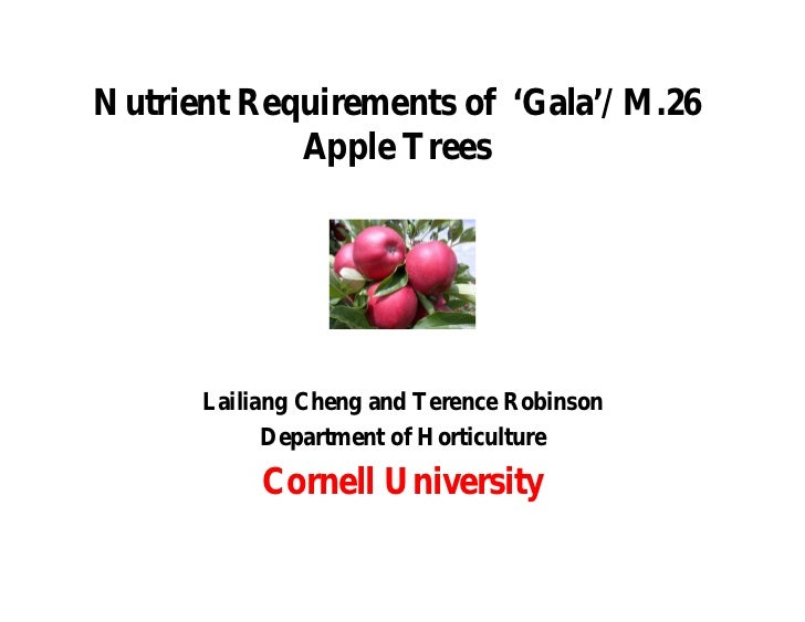 Nutrient Requirements of 'Gala'/M.26            Apple Trees      Lailiang Cheng and Terence Robinson            Department...