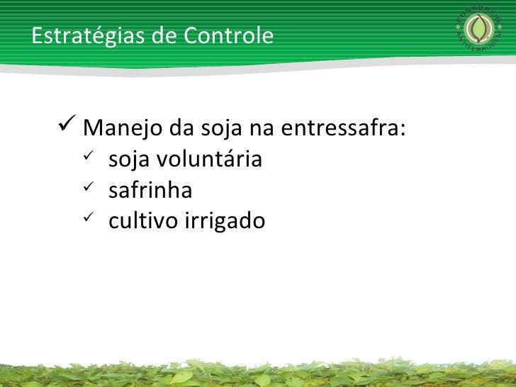 <ul><li>Manejo da soja na entressafra: </li></ul><ul><ul><li>soja voluntária </li></ul></ul><ul><ul><li>safrinha </li></ul...