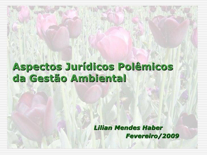 Aspectos Jurídicos Polêmicos da Gestão Ambiental <ul><li>Lilian Mendes Haber  </li></ul><ul><li>Fevereiro/2009 </li></ul>