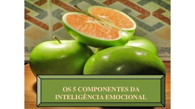 OS 5 COMPONENTES DA INTELIGÊNCIA EMOCIONAL